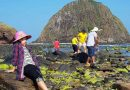"""Work together with tourism businesses to remove """"bottlenecks"""""""