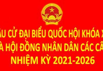 Kiên quyết đấu tranh làm thất bại âm mưu, thủ đoạn phá hoại Cuộc Bầu cử đại biểu Quốc hội khóa XV và đại biểu Hội đồng nhân dân các cấp nhiệm kỳ 2021 – 2026